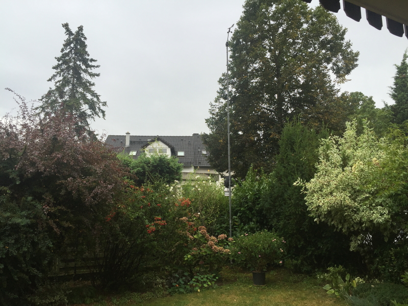 Wetter Heidelberg Kirchheim